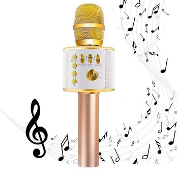 EMISH Wireless Karaoke Microphone